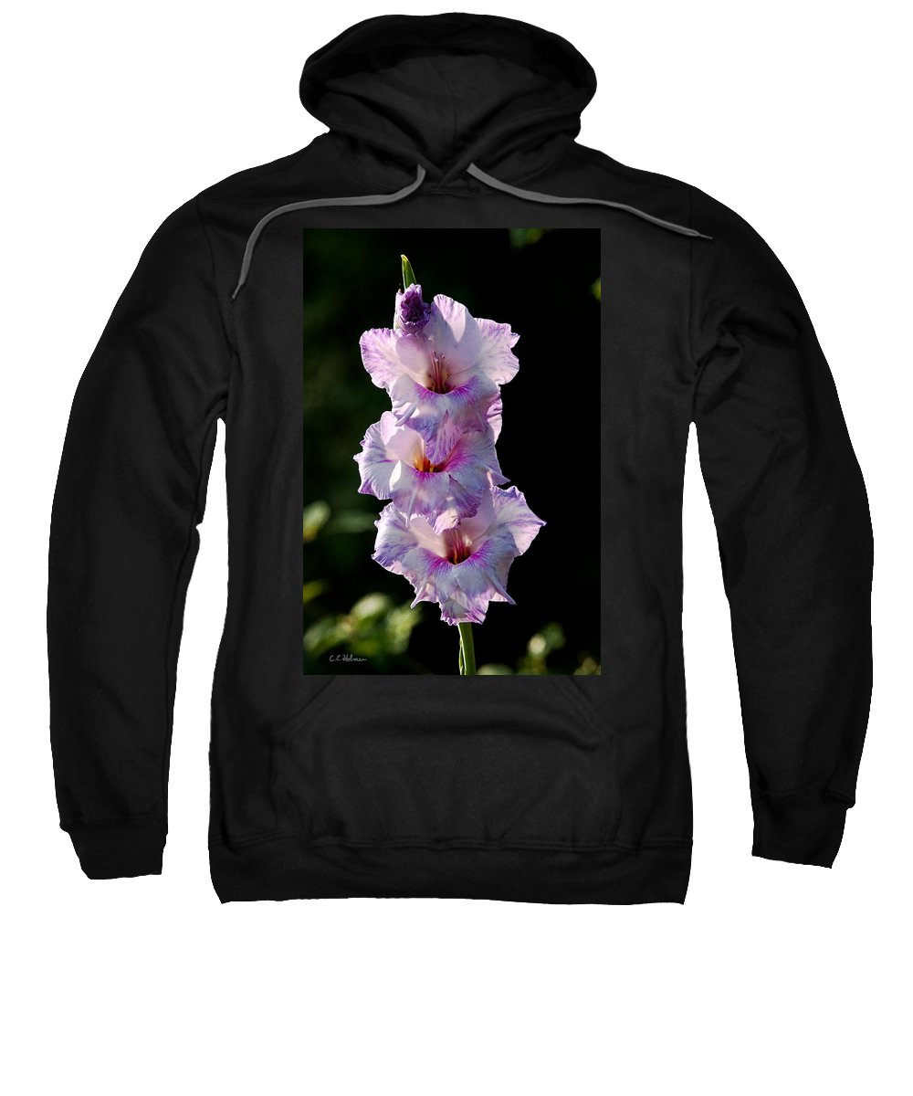 Blooms Sweatshirt featuring the photograph Blooms On A Stick by Christopher Holmes