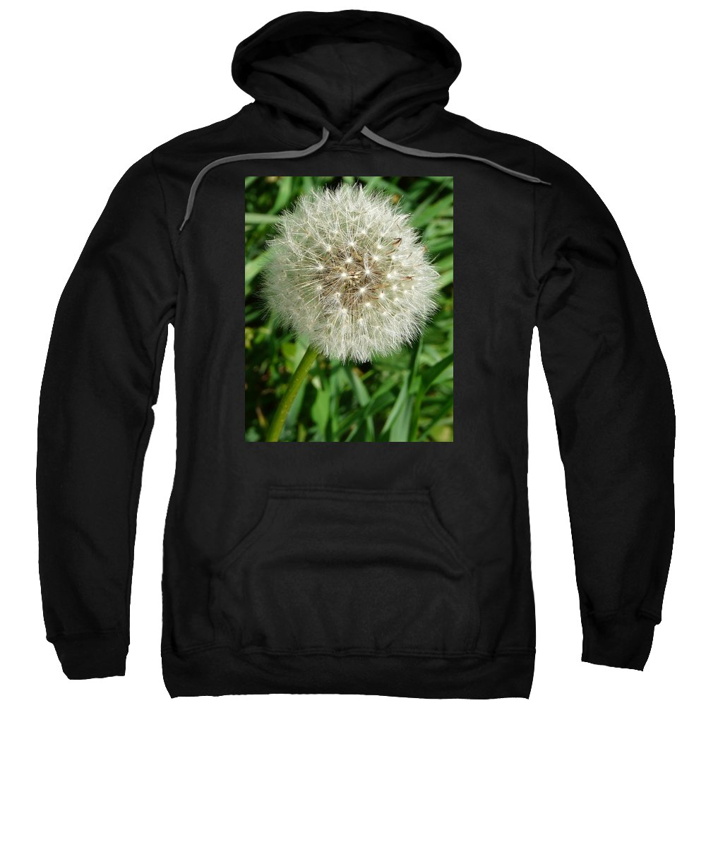 Blowball Sweatshirt featuring the photograph Blowball 1 by Valerie Ornstein