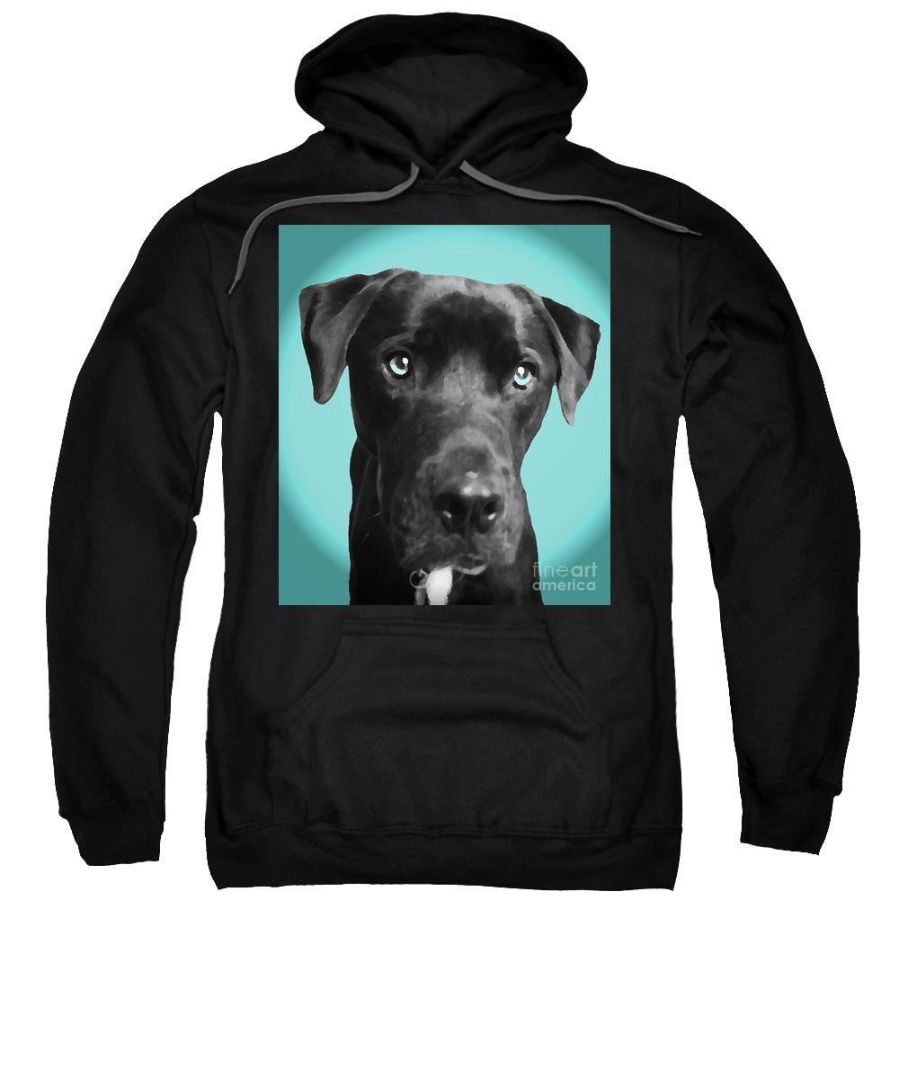 dog Art Sweatshirt featuring the photograph Blue by Amanda Barcon