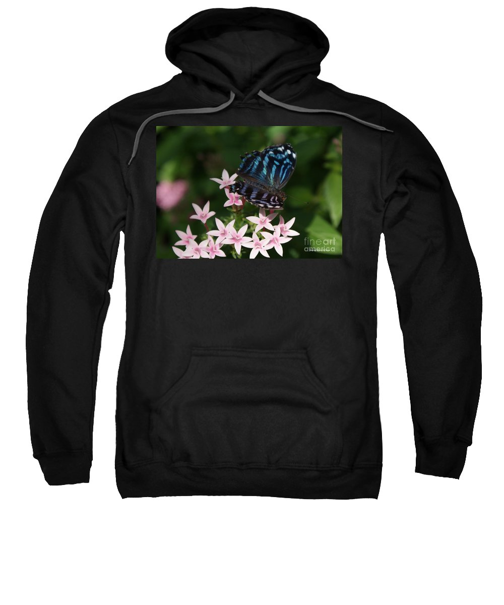 Butterfly Sweatshirt featuring the photograph Blue And Pink Make Lilac by Shelley Jones
