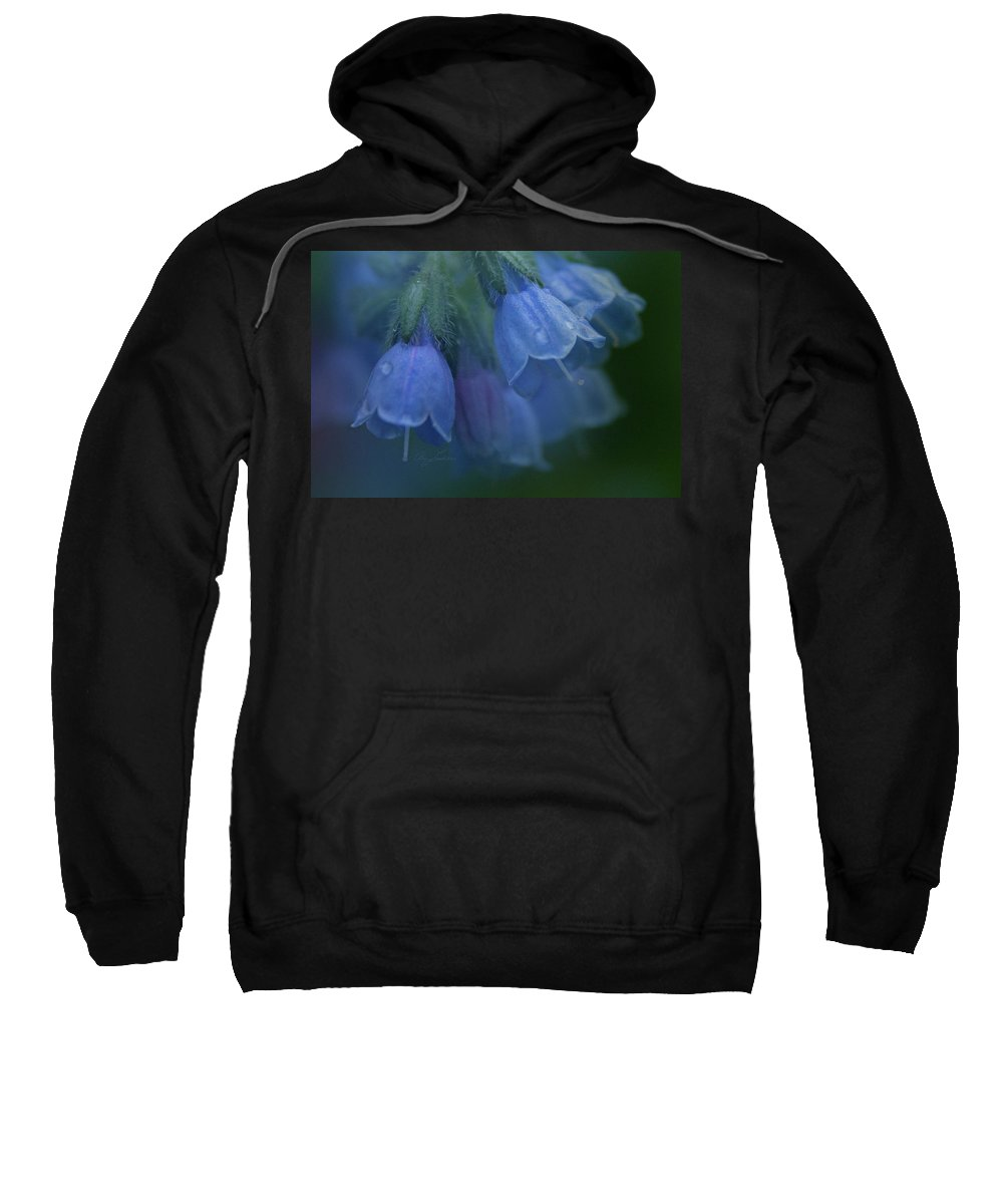 Flowers Sweatshirt featuring the photograph Blue Bells by Ann Lauwers