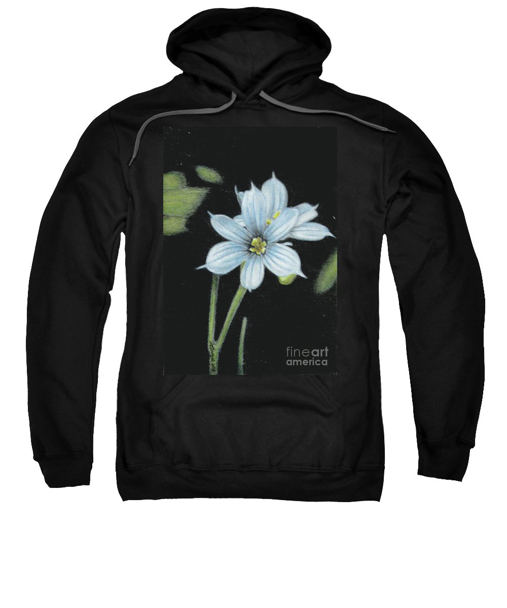 Fuqua - Artwork Sweatshirt featuring the drawing Blue Eyed Grass - 2 by Beverly Fuqua