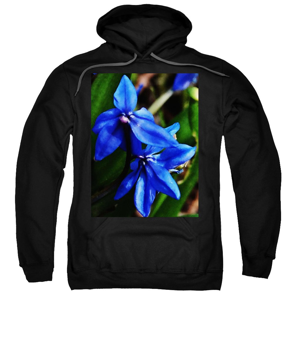 Digital Photo Sweatshirt featuring the photograph Blue Floral by David Lane