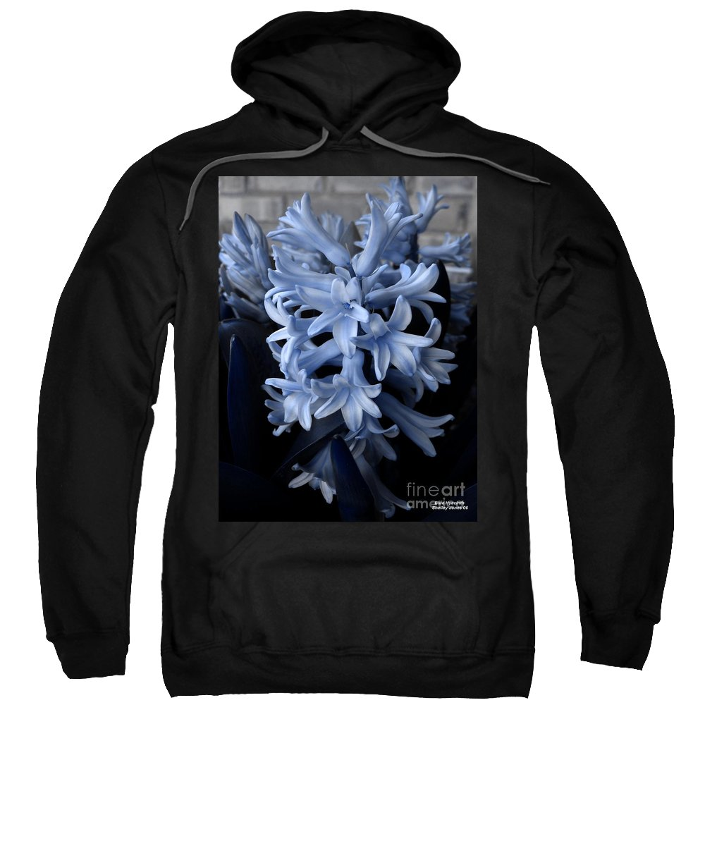 Blue Sweatshirt featuring the photograph Blue Hyacinth by Shelley Jones