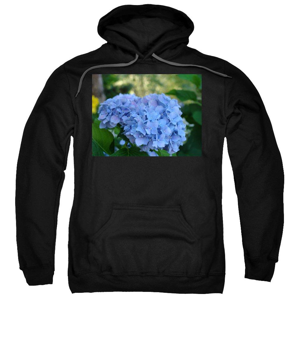 Hydrangea Sweatshirt featuring the photograph Blue Hydrangea Flower Art Prints Baslee Troutman by Baslee Troutman