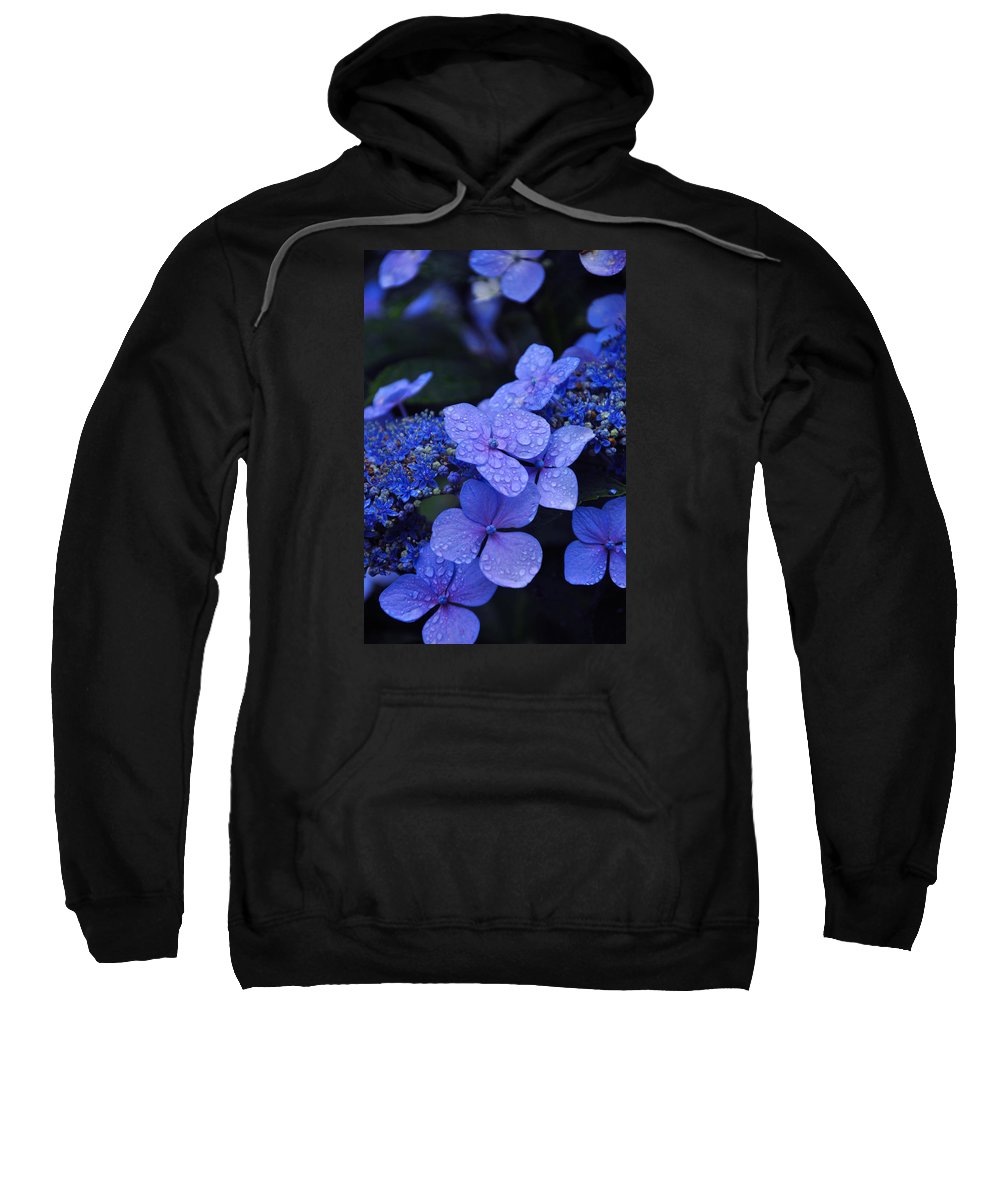 Flowers Sweatshirt featuring the photograph Blue Hydrangea by Noah Cole
