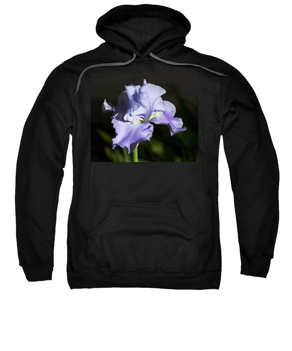 Flower Sweatshirt featuring the photograph Blue Iris by Phyllis Denton
