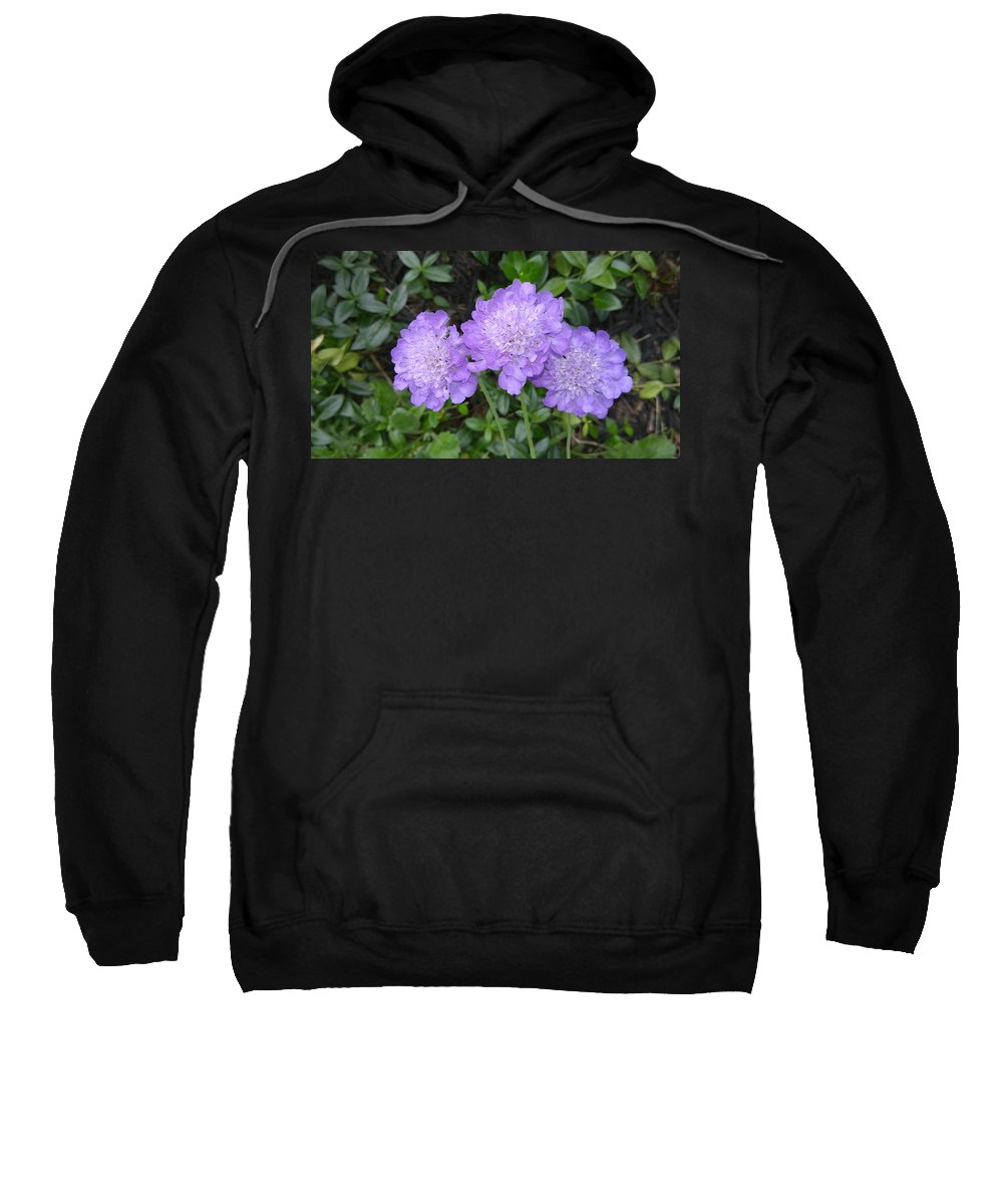 Flowers Sweatshirt featuring the photograph Blue Summer Flowers by Dawn Wells