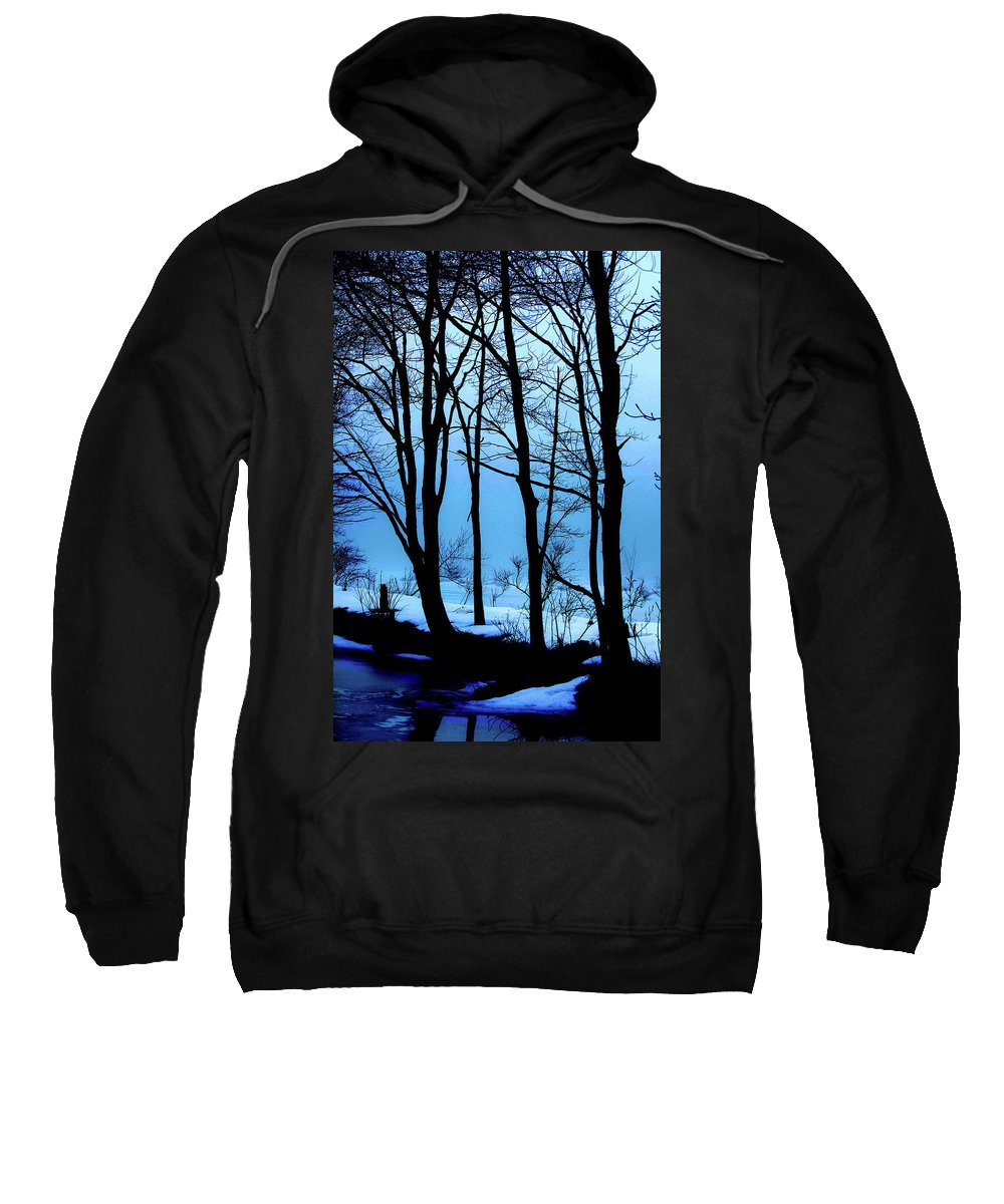Woods Sweatshirt featuring the photograph Blue Woods by Karol Livote