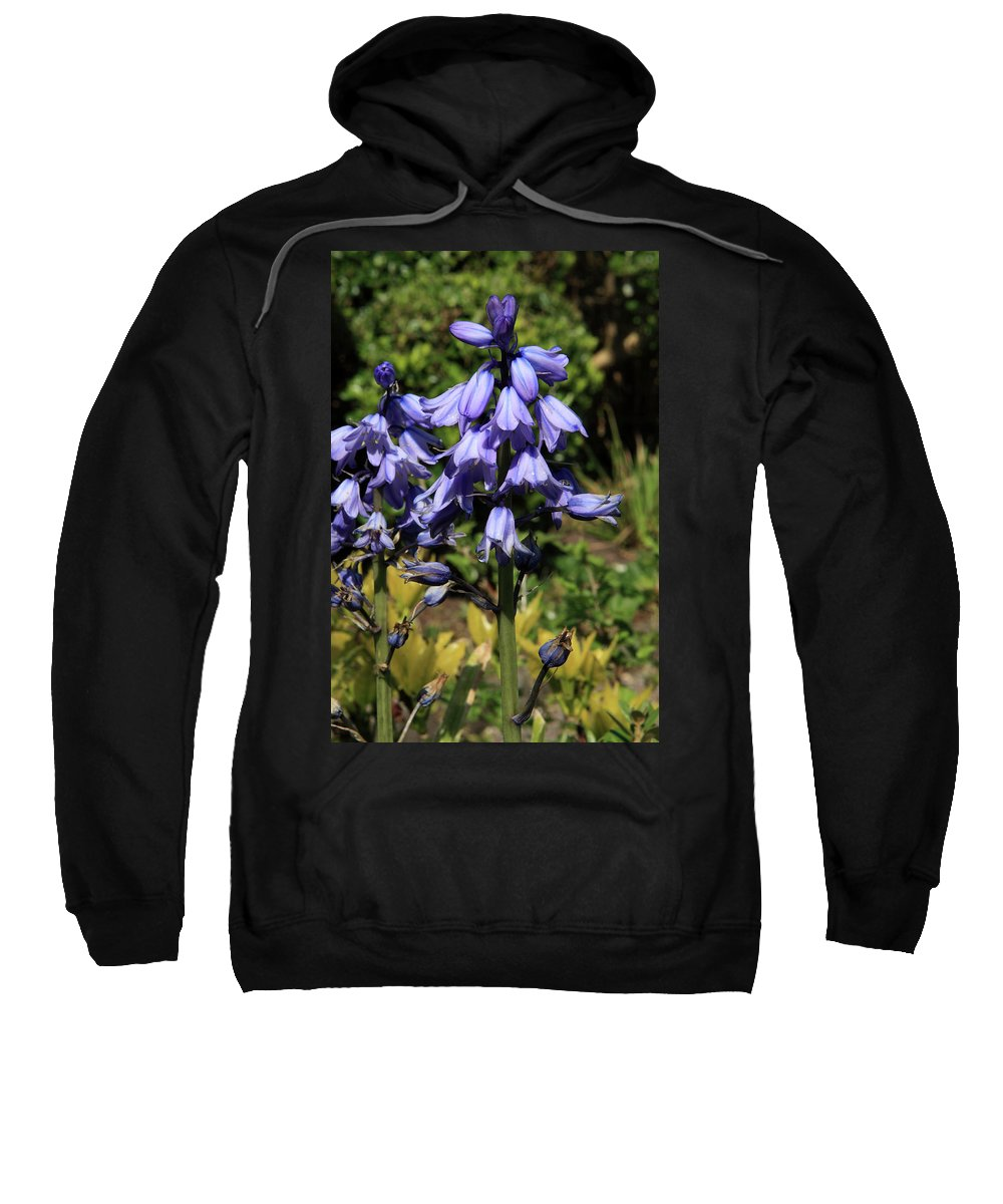 Bluebell Sweatshirt featuring the photograph Bluebells by Aidan Moran