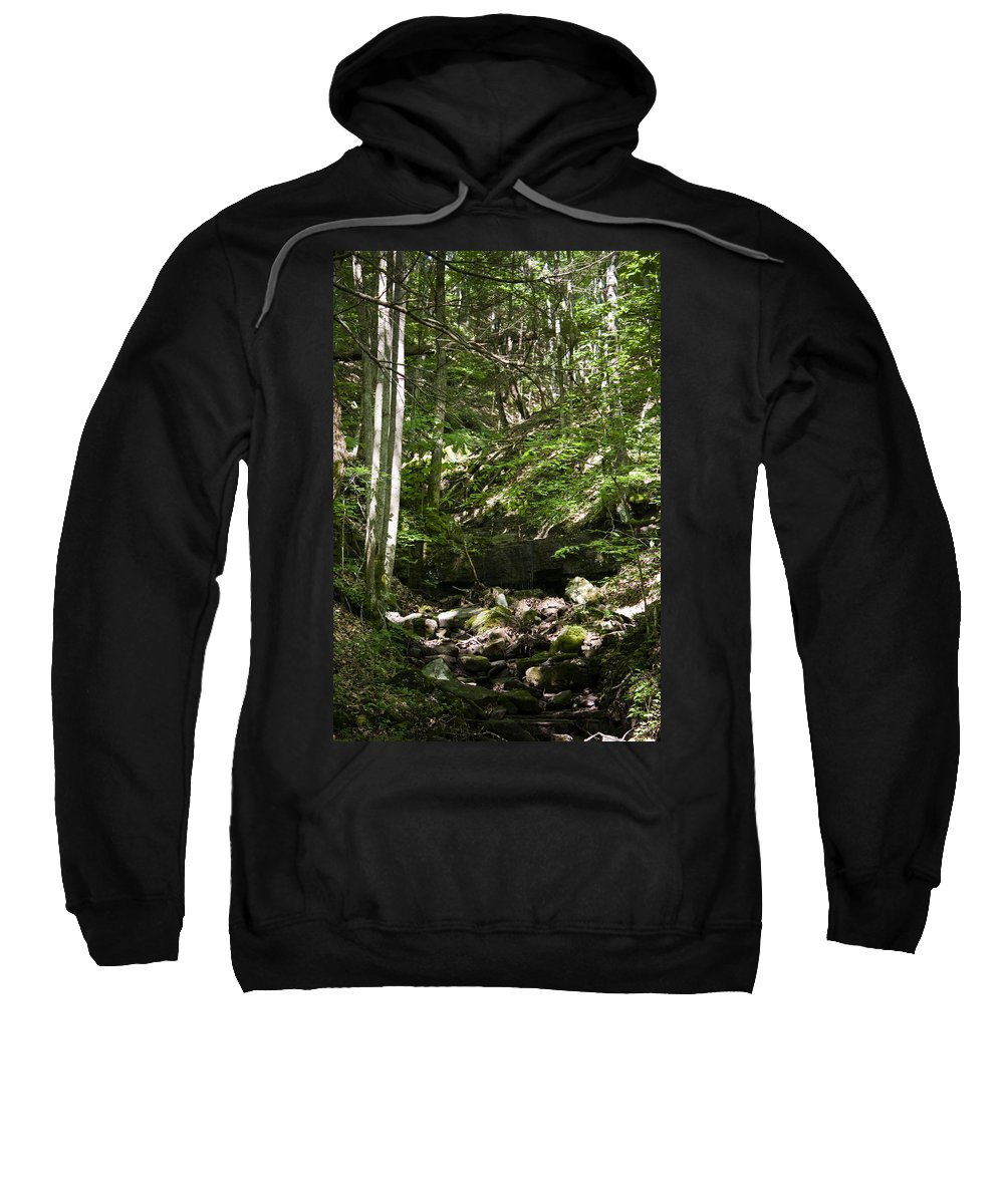 Bluestone Sweatshirt featuring the photograph Bluestone State Park Mountain Stream West Virginia by Teresa Mucha
