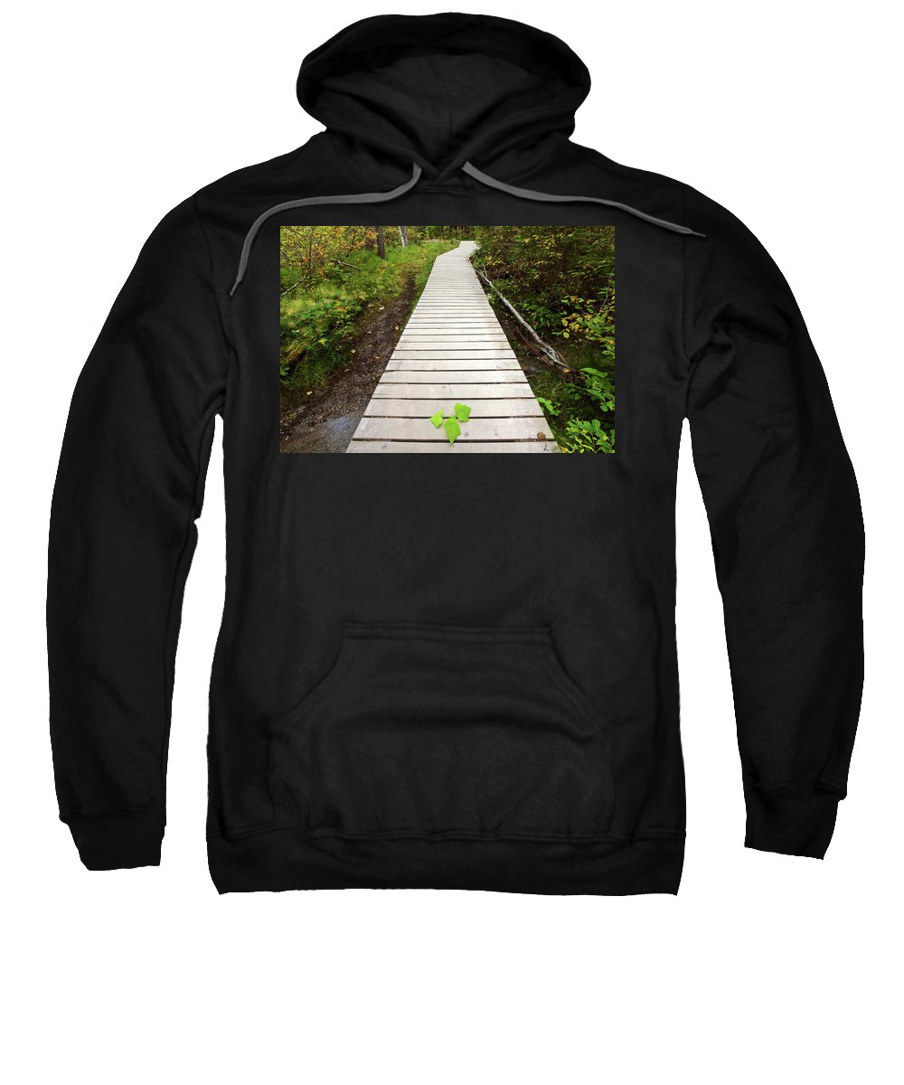 Bushes Sweatshirt featuring the digital art Boardwalk To Backguard Falls In British Columbia by Mark Duffy