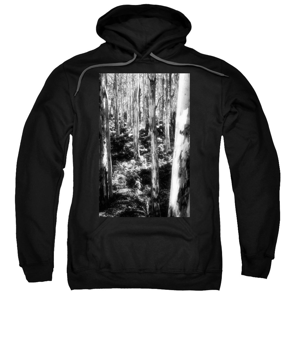 Boranup Forest Sweatshirt featuring the photograph Boranup Ghosts by Totally Talliesen
