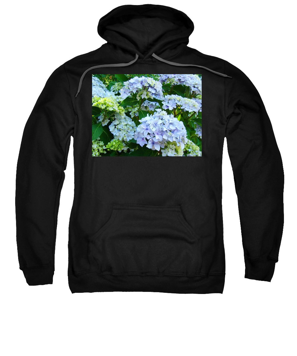 Hydrangea Sweatshirt featuring the photograph Botanical Art Prints Floral Hydrangea Flower Garden Baslee by Baslee Troutman