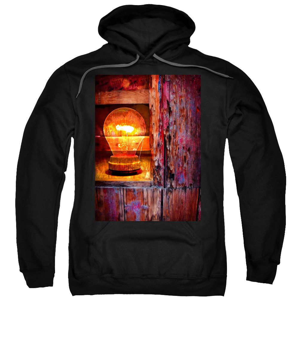 Skip Sweatshirt featuring the photograph Bright Idea by Skip Hunt