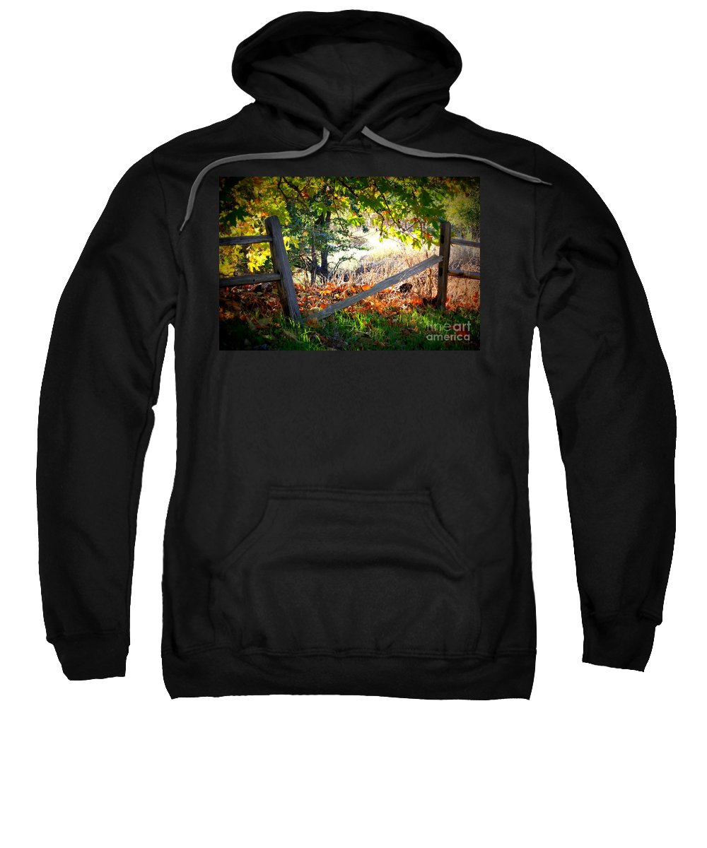 Autumn Sweatshirt featuring the photograph Broken Fence In Sycamore Park by Carol Groenen