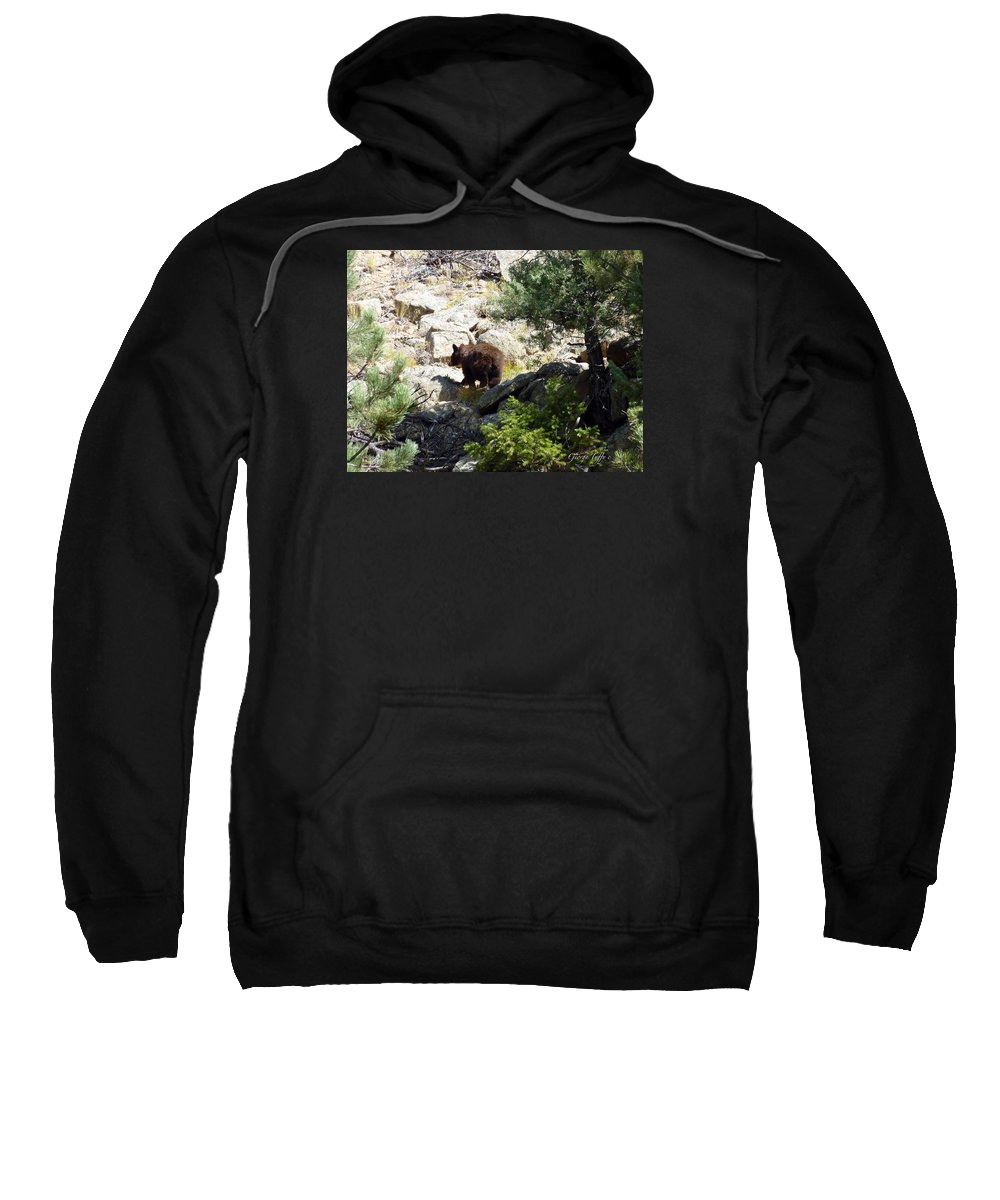 Wildlife Bear Rocky Mountains Nature Forest Rocks Sweatshirt featuring the photograph Brown Bear by George Tuffy
