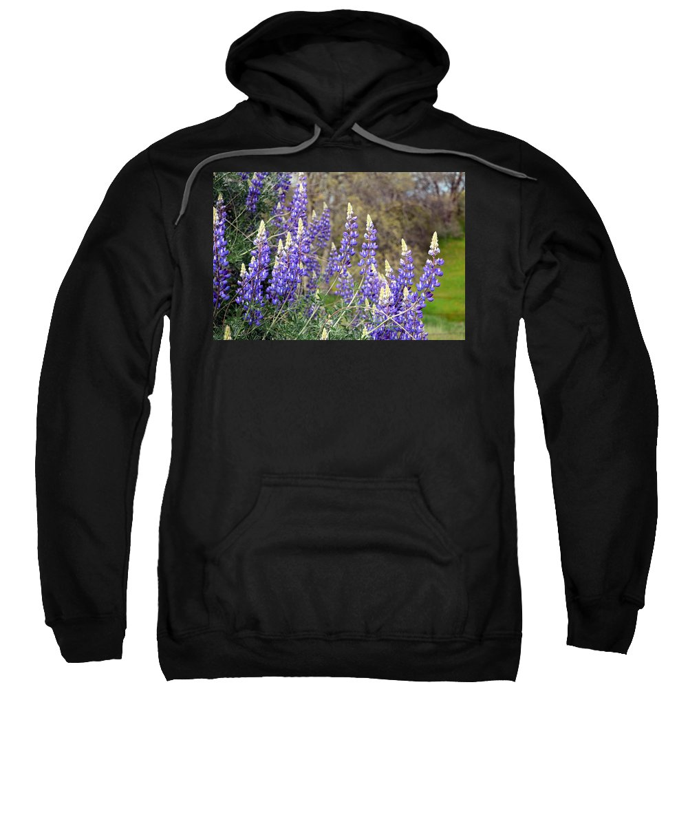 Bush Lupines Sweatshirt featuring the photograph Bush Lupines by Chris Gudger