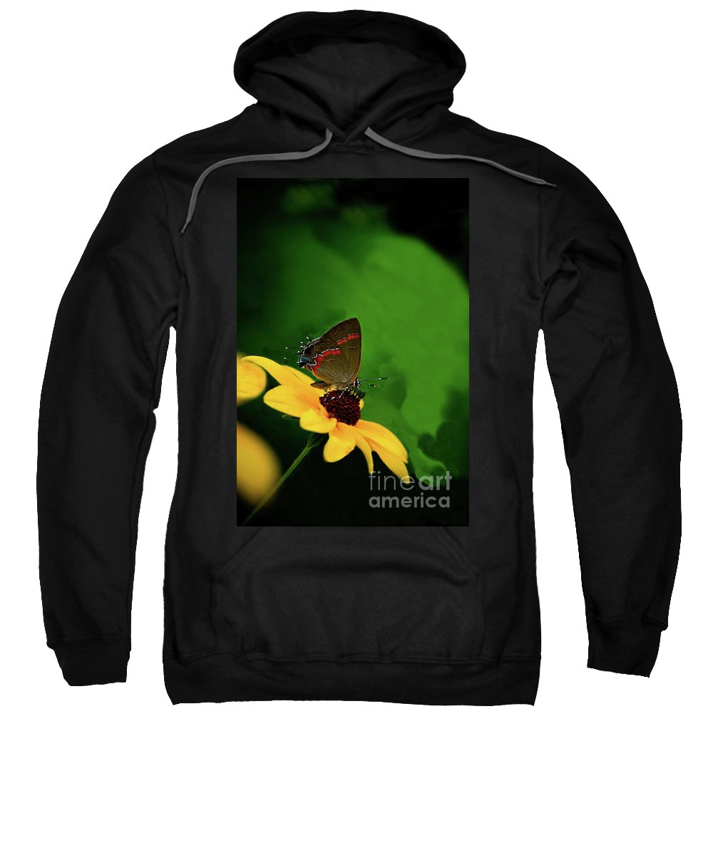 Butterfly Photography Sweatshirt featuring the photograph Butterfly Kisses by Kim Henderson