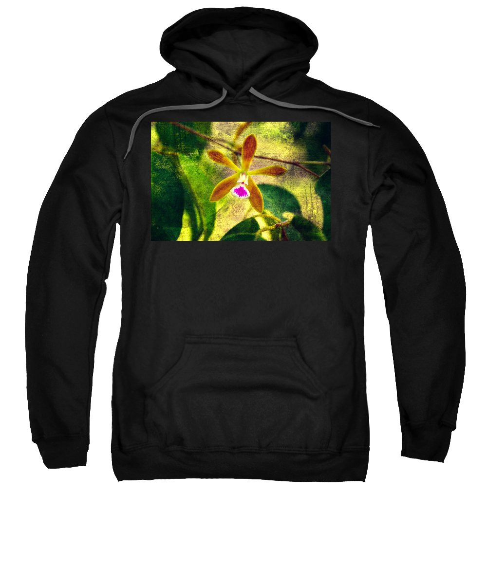 Orchid Sweatshirt featuring the photograph Butterfly Orchid - Encyclia Tampensis by Rich Leighton
