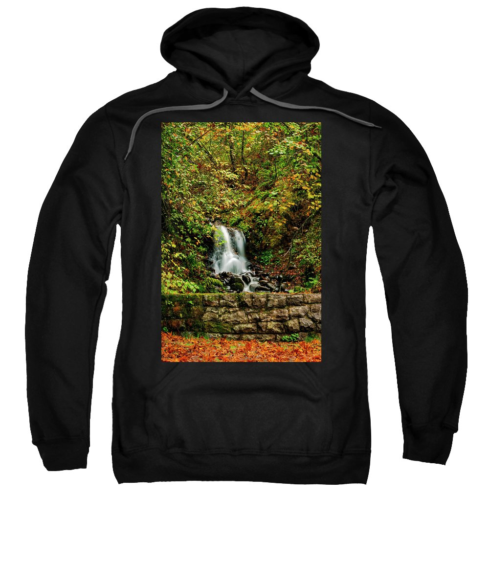 Fall Colors Sweatshirt featuring the photograph By The Side Of The Road by Hans Franchesco