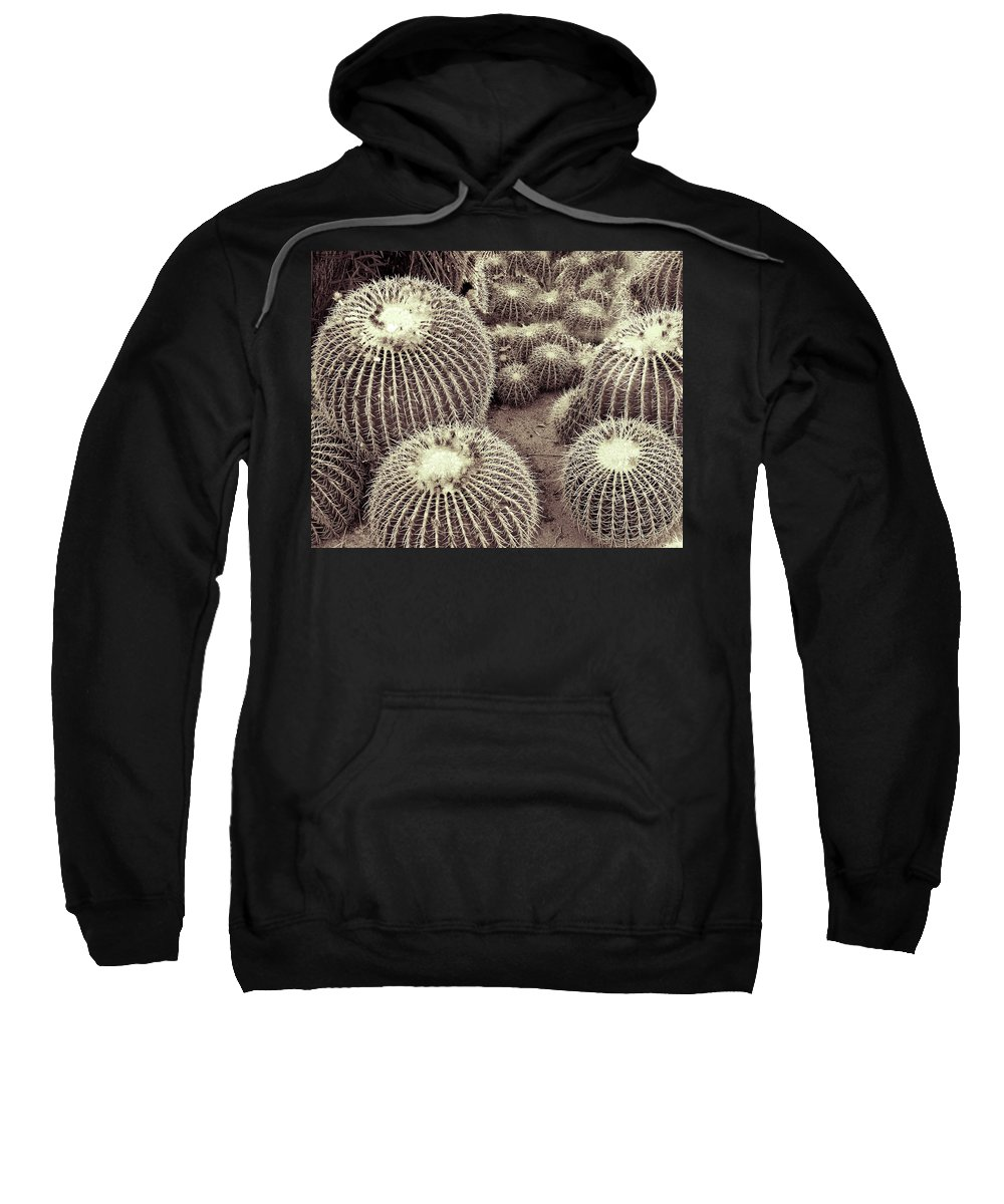 South Palm Canyon Sweatshirt featuring the photograph Cacti Community by William Dey