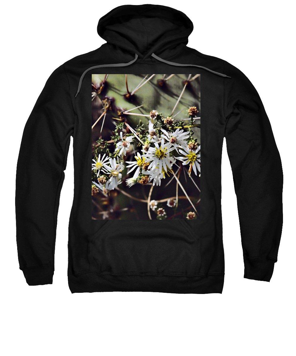 Cactus Sweatshirt featuring the photograph Cactus Flowers by Scott Wyatt
