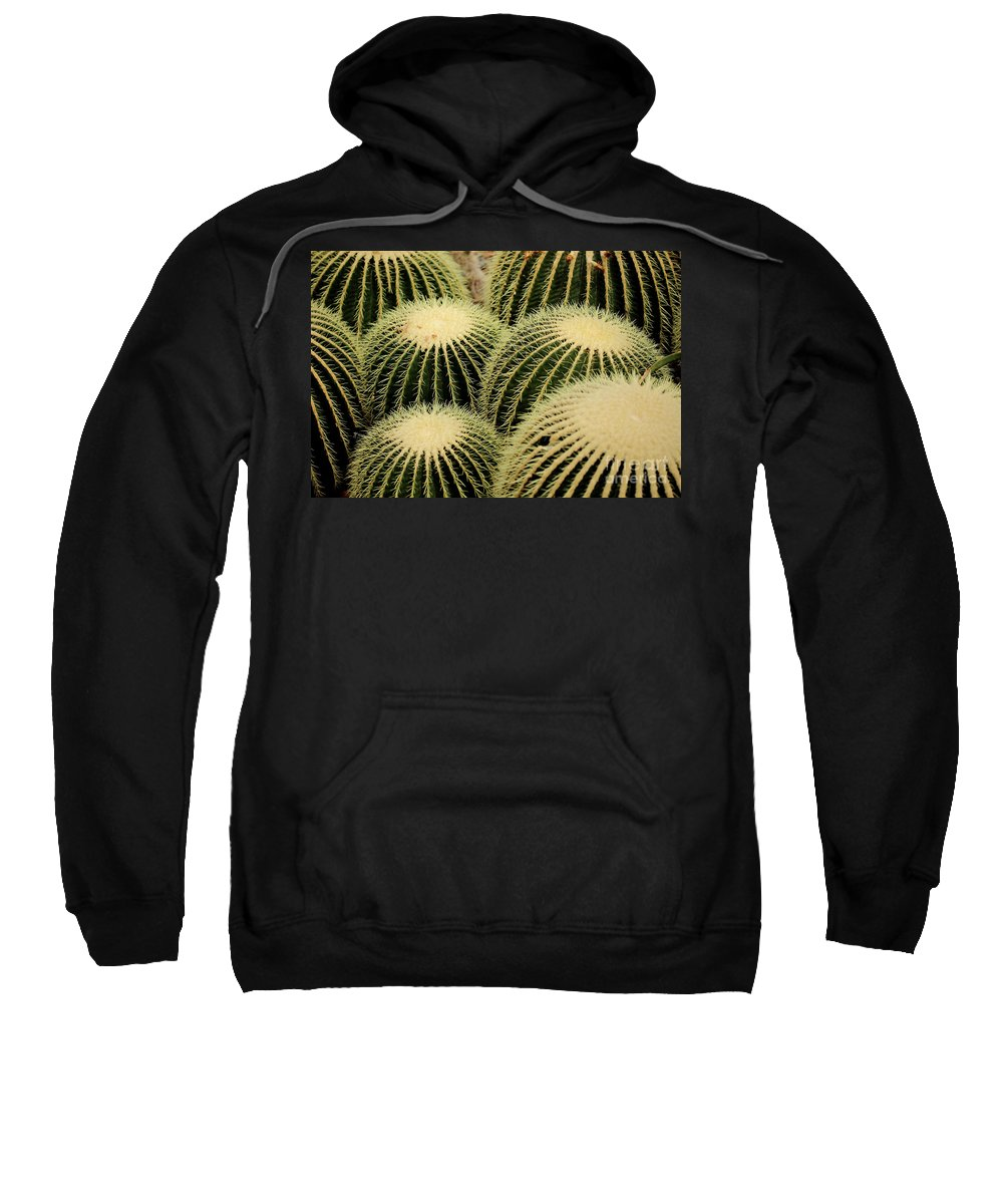 Cactus Sweatshirt featuring the photograph Cactus Party by Douglas Milligan