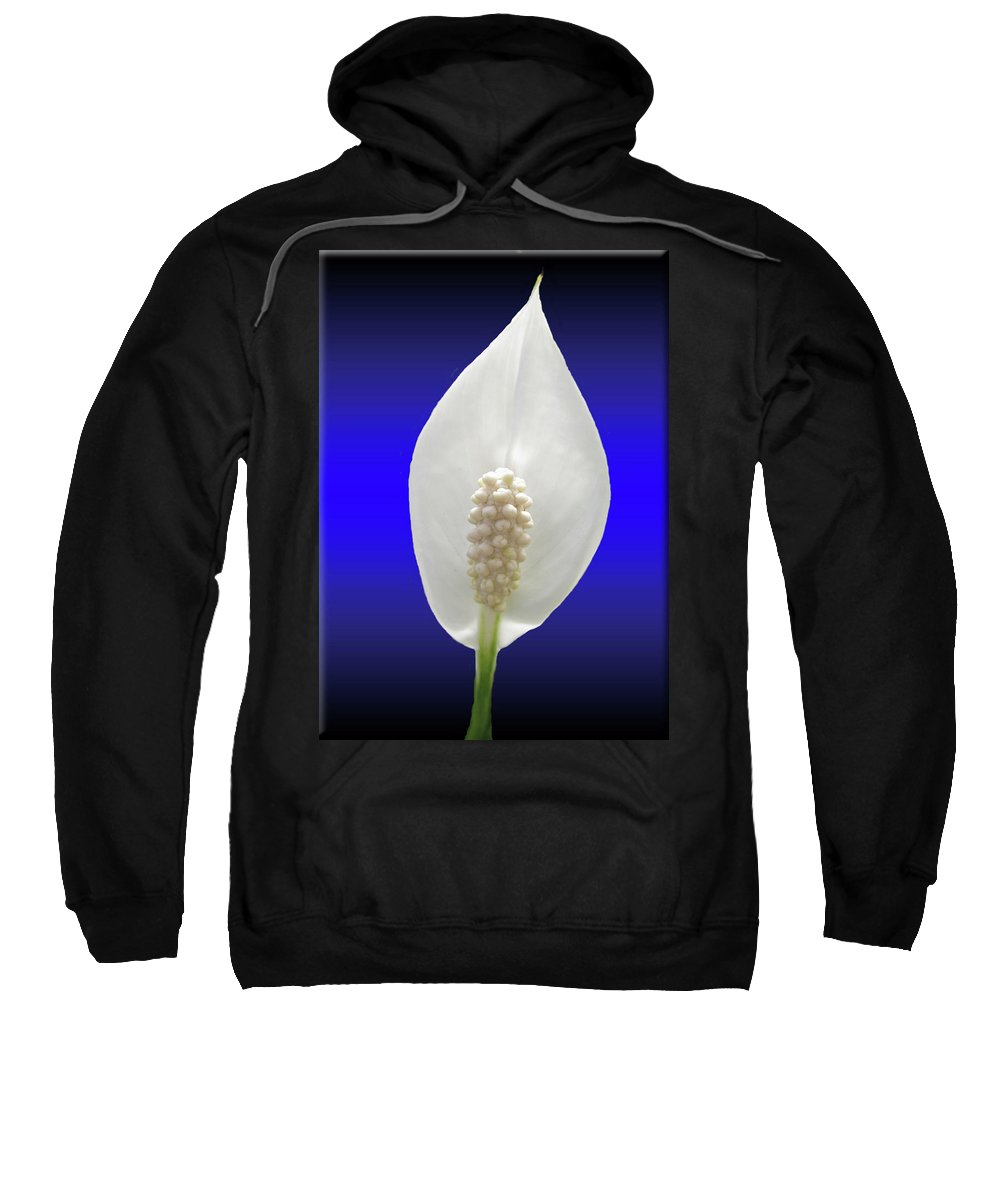 Callow Lily Sweatshirt featuring the photograph Callow Lily by Donna Brown