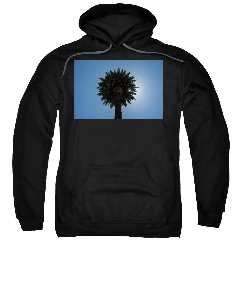 Palm Sweatshirt featuring the photograph Date Palm Starburst by Richard White