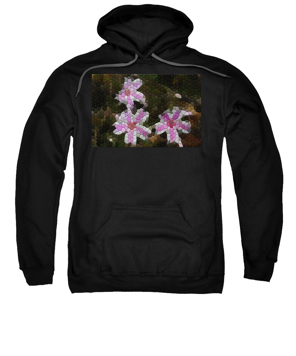 Flower Sweatshirt featuring the photograph Candy Striped Phlox by Kathryn Meyer