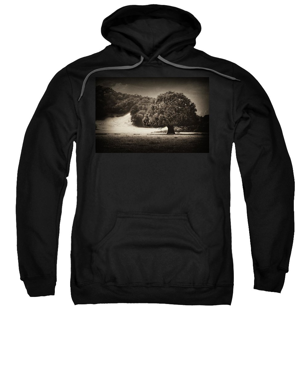 Landscape Sweatshirt featuring the photograph Canopy by Laura Macky