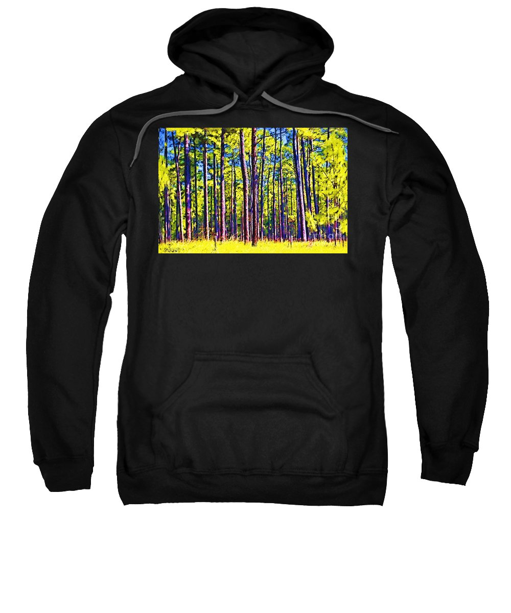 Forest Sweatshirt featuring the photograph Can't See The Forest by Donna Bentley