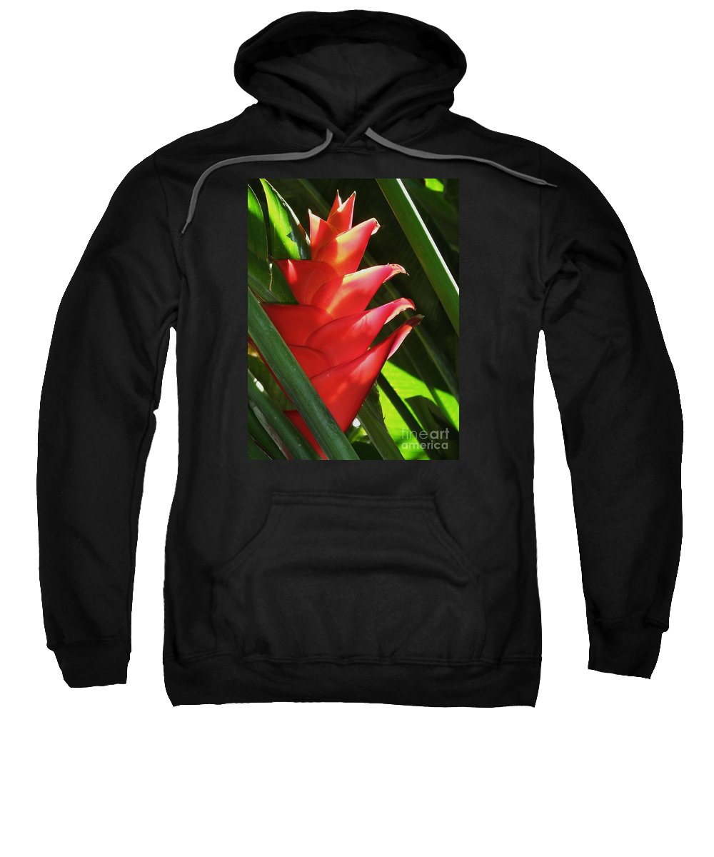 Flower Sweatshirt featuring the photograph Caribbean Color by Neil Zimmerman