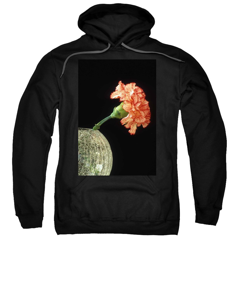 Carnation Sweatshirt featuring the photograph Carnation by Laurie Paci