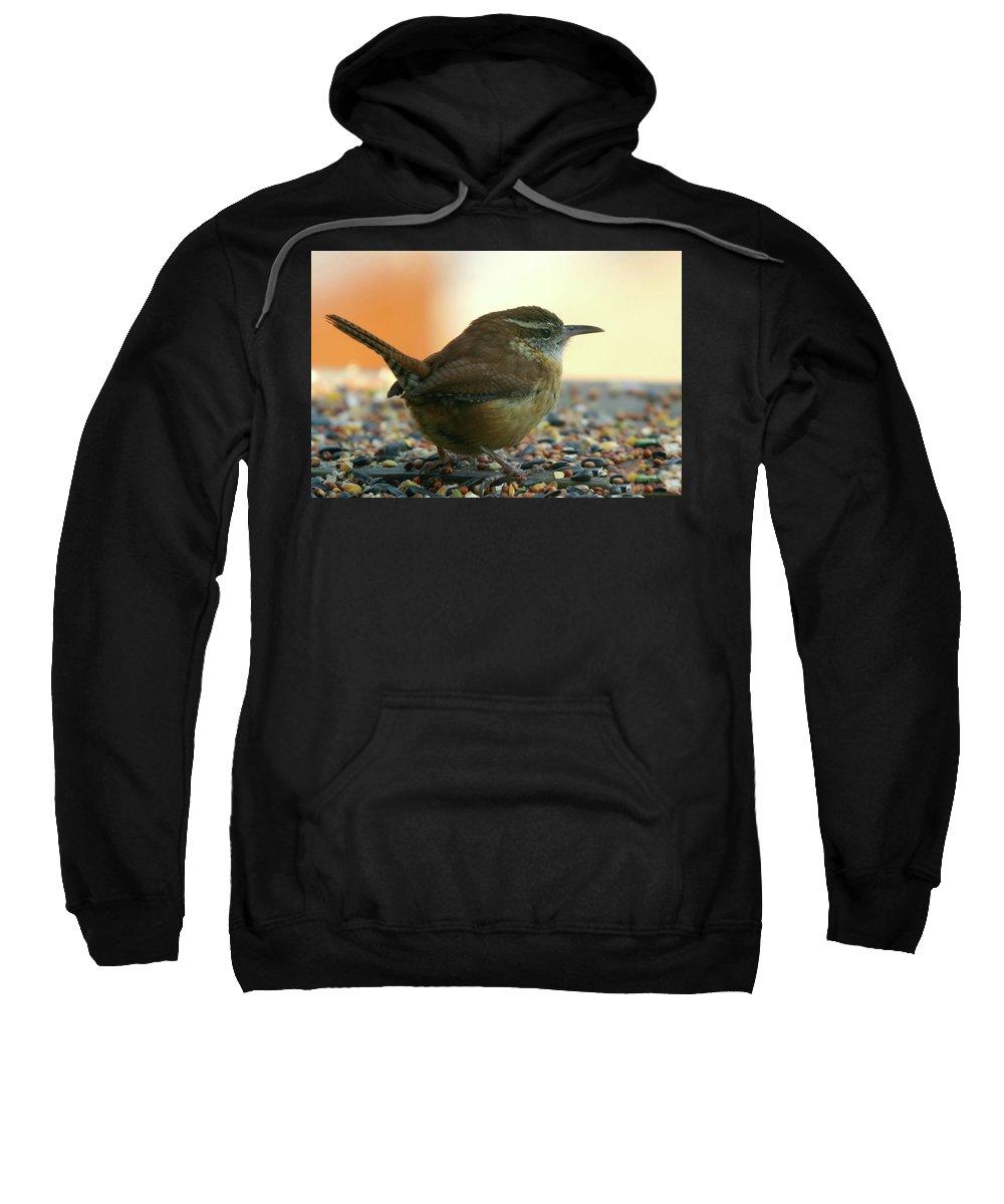Wren Sweatshirt featuring the photograph Carolina Wren by Ericamaxine Price