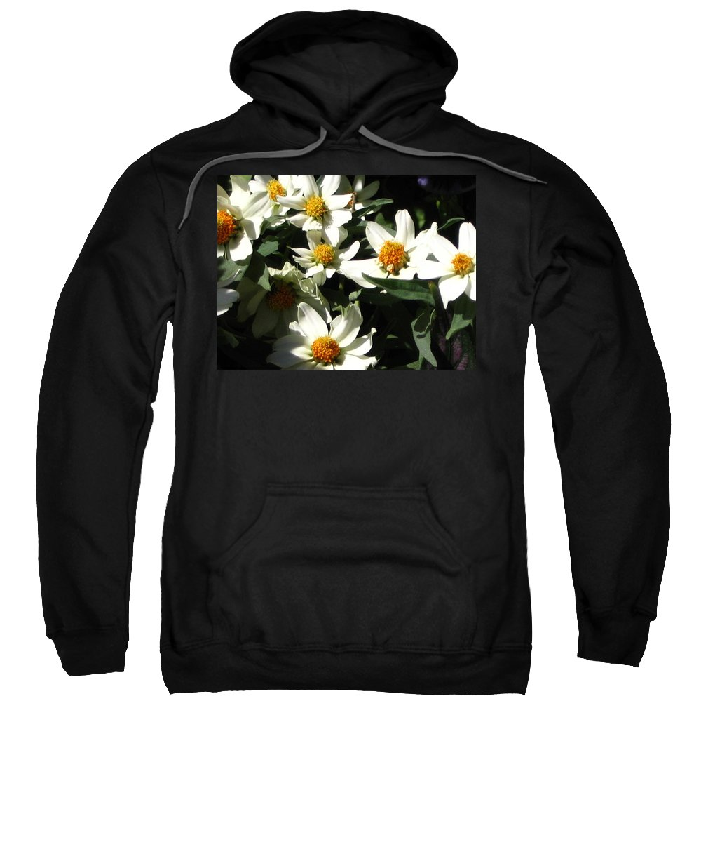 Floral Sweatshirt featuring the photograph Cascade Of White Flowers by Line Gagne