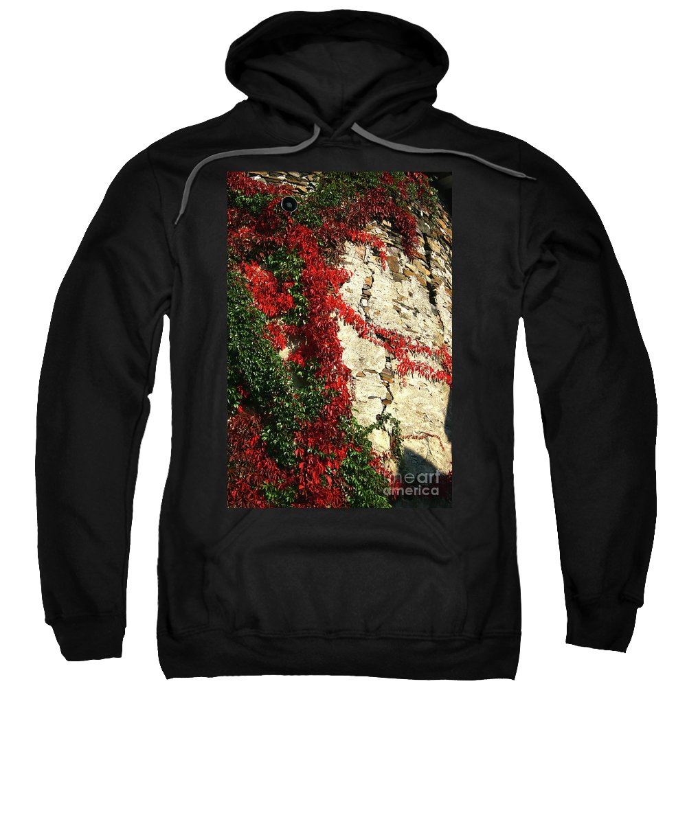 Color Vines O Sweatshirt featuring the photograph Castle Vines by Timothy Sanford