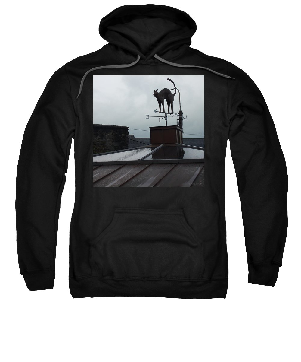 Cat Sweatshirt featuring the photograph Cat On A Cool Tin Roof by Tim Nyberg