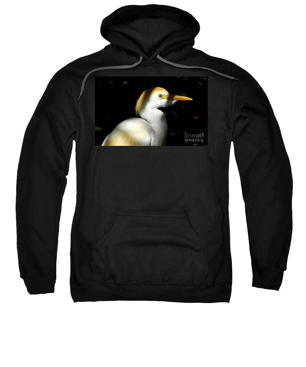 Cattle Egret Sweatshirt featuring the photograph Cattle Egret In Shadow by David Lee Thompson