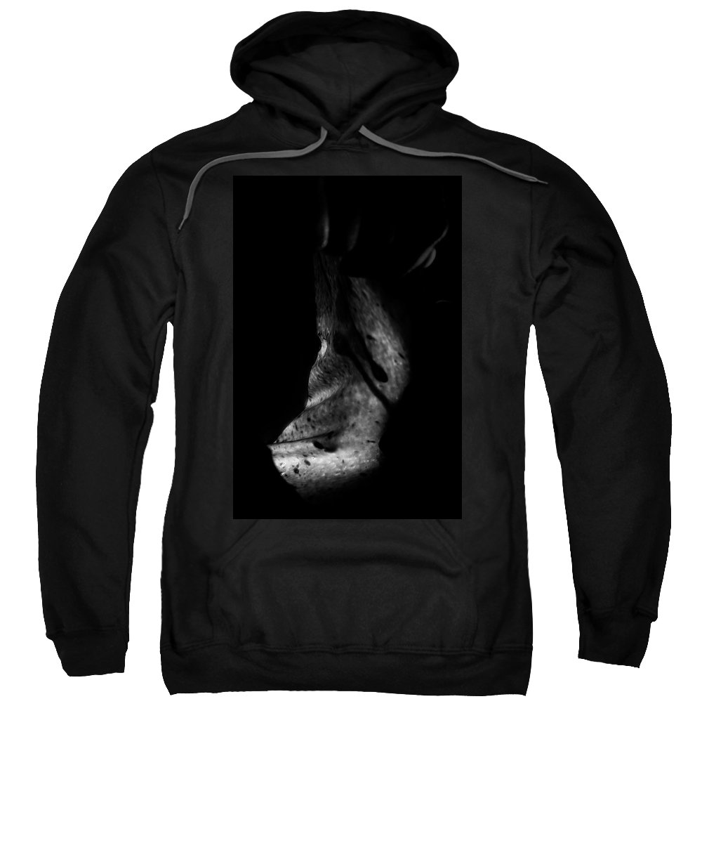 Nude Sweatshirt featuring the photograph Cave Of Seduction by Pavel Jelinek