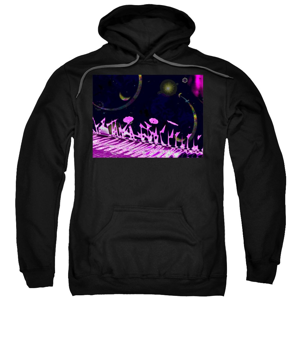 Garden Sweatshirt featuring the digital art Celestial Garden by Tim Allen