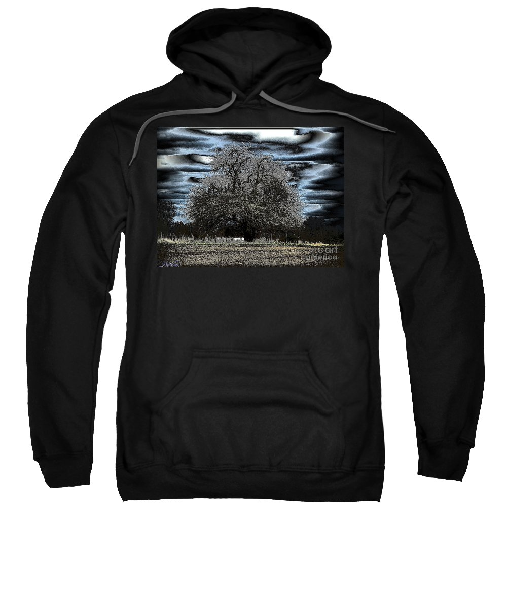 Tree Sweatshirt featuring the photograph Celtic by September Stone