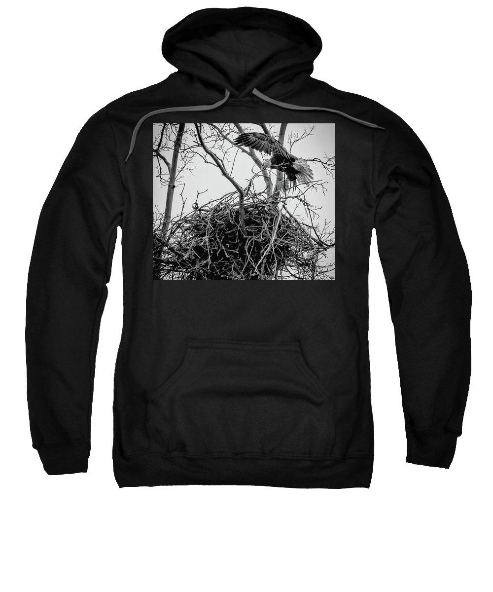 2018 Sweatshirt featuring the photograph Centerport Eagle 1 by Deidre Elzer-Lento