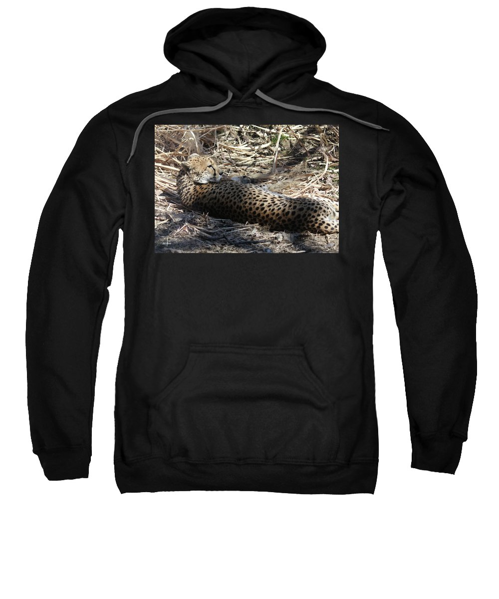 Maryland Sweatshirt featuring the photograph Cheetah Awakened by Ronald Reid