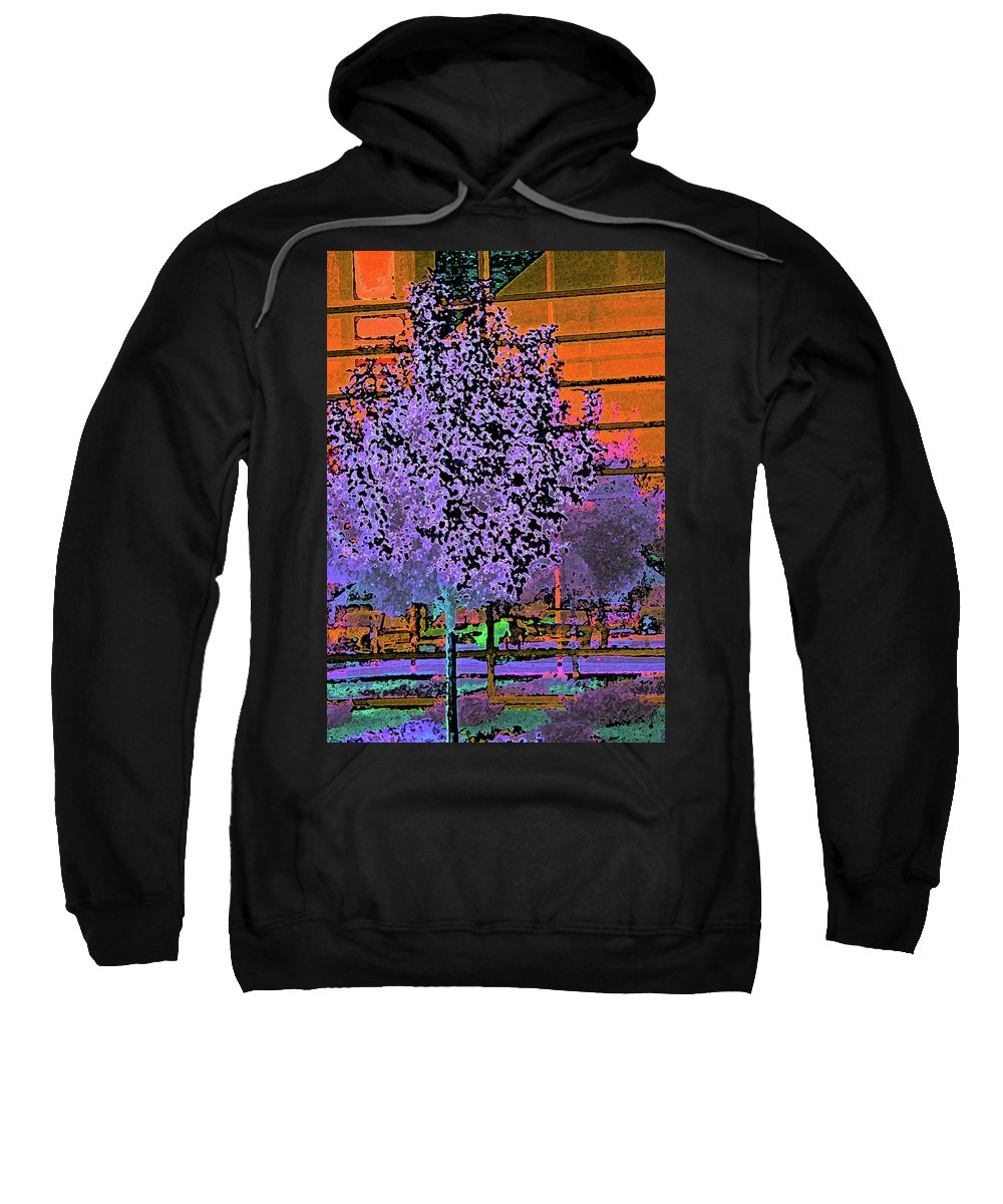 Abstract Sweatshirt featuring the digital art City Landscaping Fantasy by Lenore Senior