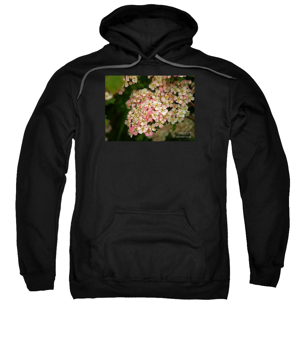 Fine Art Photography Sweatshirt featuring the photograph Colleen by Patricia Griffin Brett