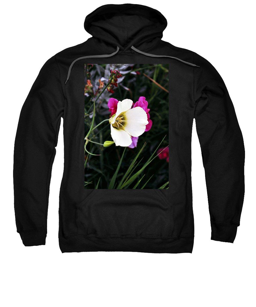 Wildflower Sweatshirt featuring the photograph Colorado Wildflower 2 by Marilyn Hunt