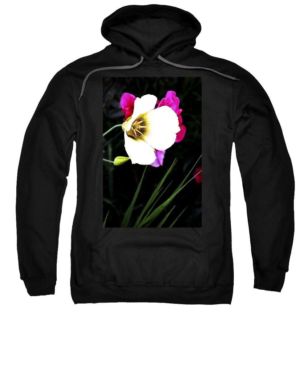 Wildflower Sweatshirt featuring the photograph Colorado Wildflower1 by Marilyn Hunt