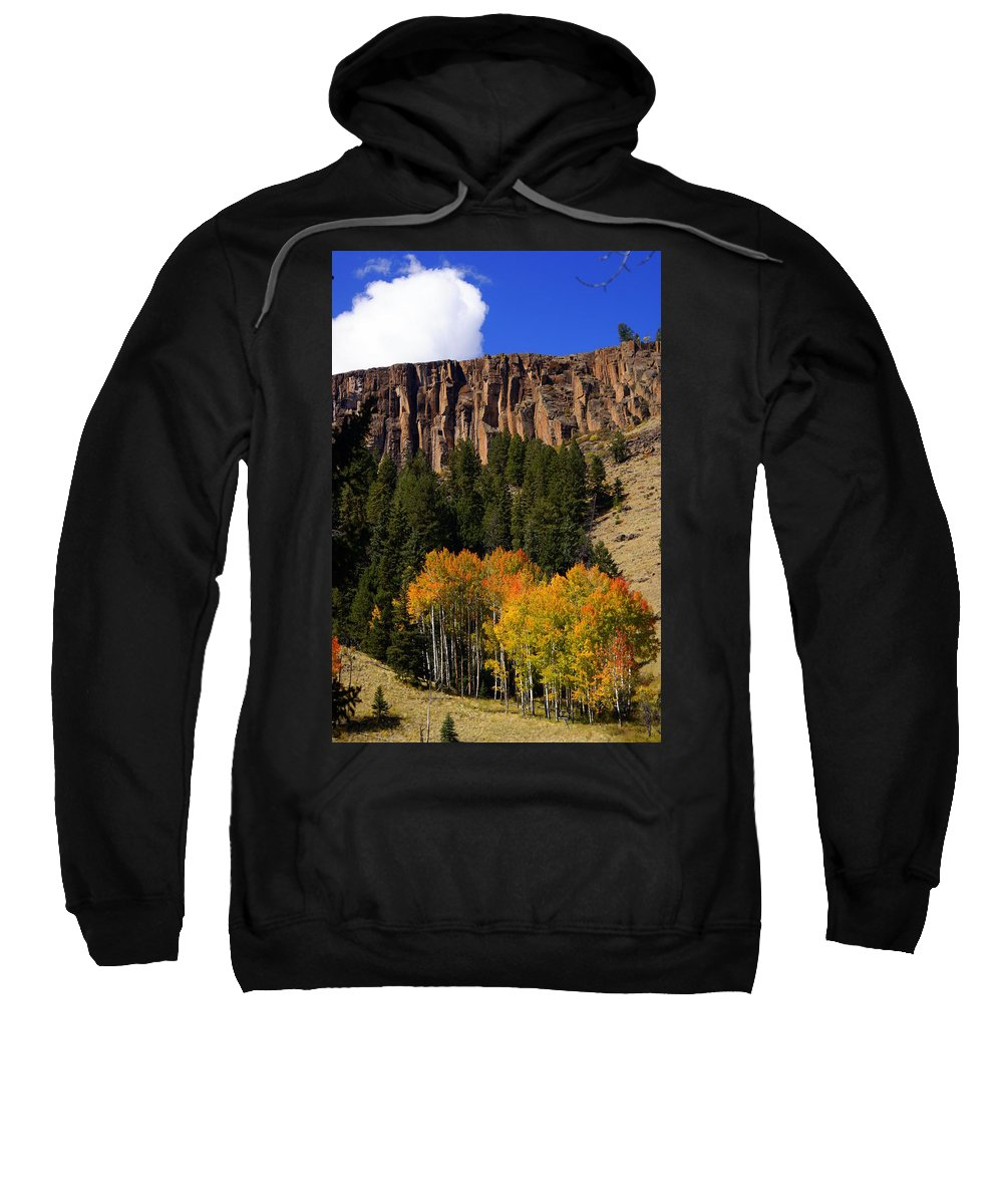 Fall Colors Sweatshirt featuring the photograph Colorful Canyon by Marty Koch